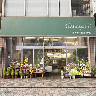 hanayoshi01_ico